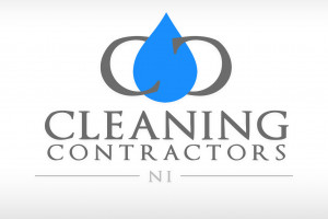 Offer - Carpets, upholstery and sanitization cleaning